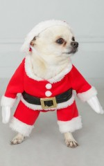 Santa Claus Is Coming costume in red and white