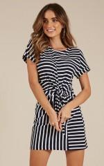Standing Still dress in navy stripe