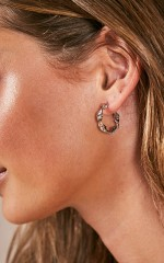 Here We Come earrings in silver