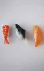 Sushi Fridge Magnets