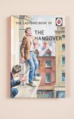 Ladybird Book Of The Hangover