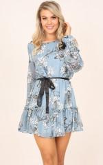 Todays Princess dress in blue floral