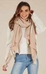 Uptown Girl scarf in blush stripe