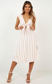 By The Dozen Dress In Blush Stripe