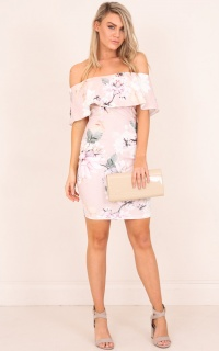 Precious Things Dress In  Blush Floral