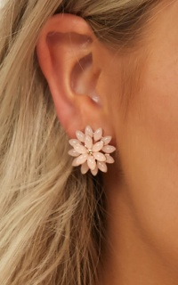 Take My Heart Earrings In Blush