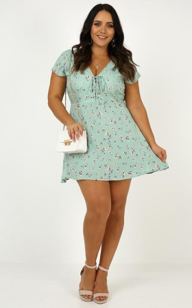 Secret Cure Dress In Mint Floral