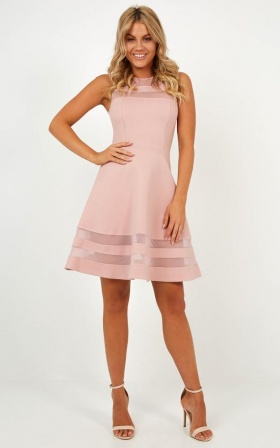 Results Driven Dress in Blush