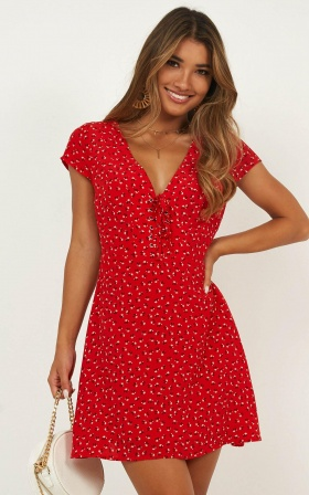 Secret Cure Dress In Red Print