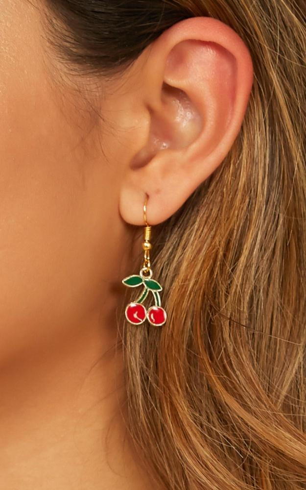 /t/n/tnsaw_the_signs_earrings_in_red.jpg